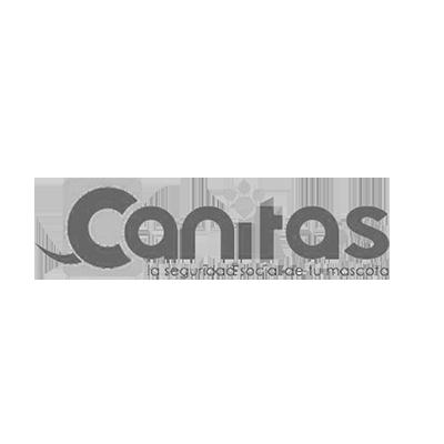 canitas-veterinario